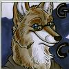graycoyote userpic