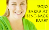 Bojo barks at bent-back ears