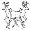 siamese deer