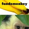 fandomonkey