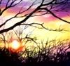 Ryana: Sunset