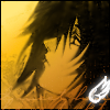 tengu_wings userpic