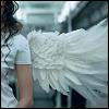 cement_angel userpic