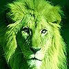 drgreenthumb06 userpic