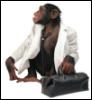 scut_monkey userpic