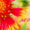 justbreathe80 userpic