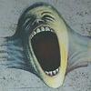The Wall, angry