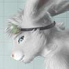Zen swimmer bunny closeup