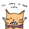 Deirdre: hate cats