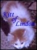 kitt_of_lindon userpic