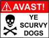 Avast Pirates