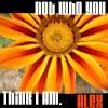 alex_to_you