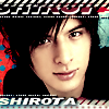 penguin_shirota