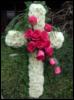 Penny Cross