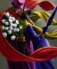 Tulip_Branches