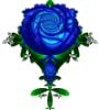 valkyrie4clex: blue rose