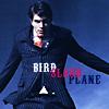 Brandon Routh - it's a bird! it's a plan