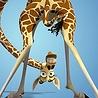 Жирафа именинная