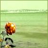 jtr_colorbars userpic