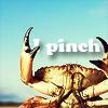 [misc] crab pinch