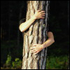(crow girl): tree-hugger