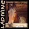 ladivine userpic