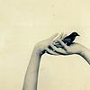 alexis gabriel: HANDS