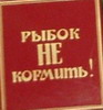 Юля Карасик