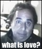 what is love? ( i dunnooo!!!!)
