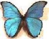 byrlakin userpic