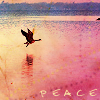 Peace - Lake