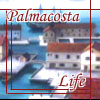 Palmacosta Academy