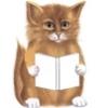 Lala: reading kitten