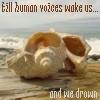 till human voices