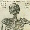 """Libri Septem"""", """"De Humani Corporis Fabrica"""