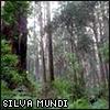 Silva Mundi OOC