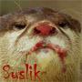goredel userpic