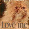 Crookshanks - Love Me