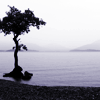sangoire userpic