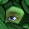 leaf-nin
