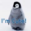 Penguin cute