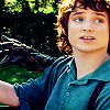 half the shire, as I was saying