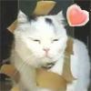 tanela userpic