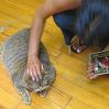 shalini: cat