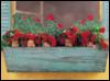 деточки-цветочки