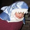 shark bb