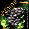 whine (grapes) : charliemc
