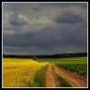 landscape midwest