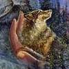 волк на ладони by Josephin Wall