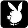 piggy_chillo userpic